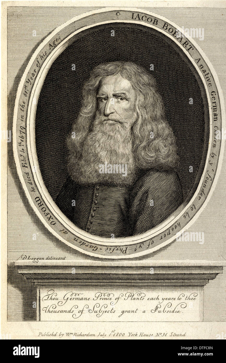 Jacob Bobart (1599-1680) - Stock Image