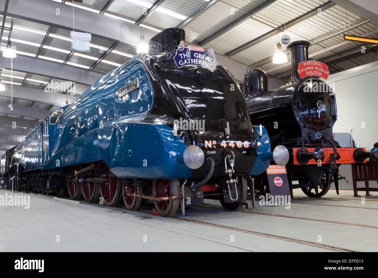 The 'Mallard' Class A4 steam locomotive at the National Railway Museum, Shildon - Stock Image