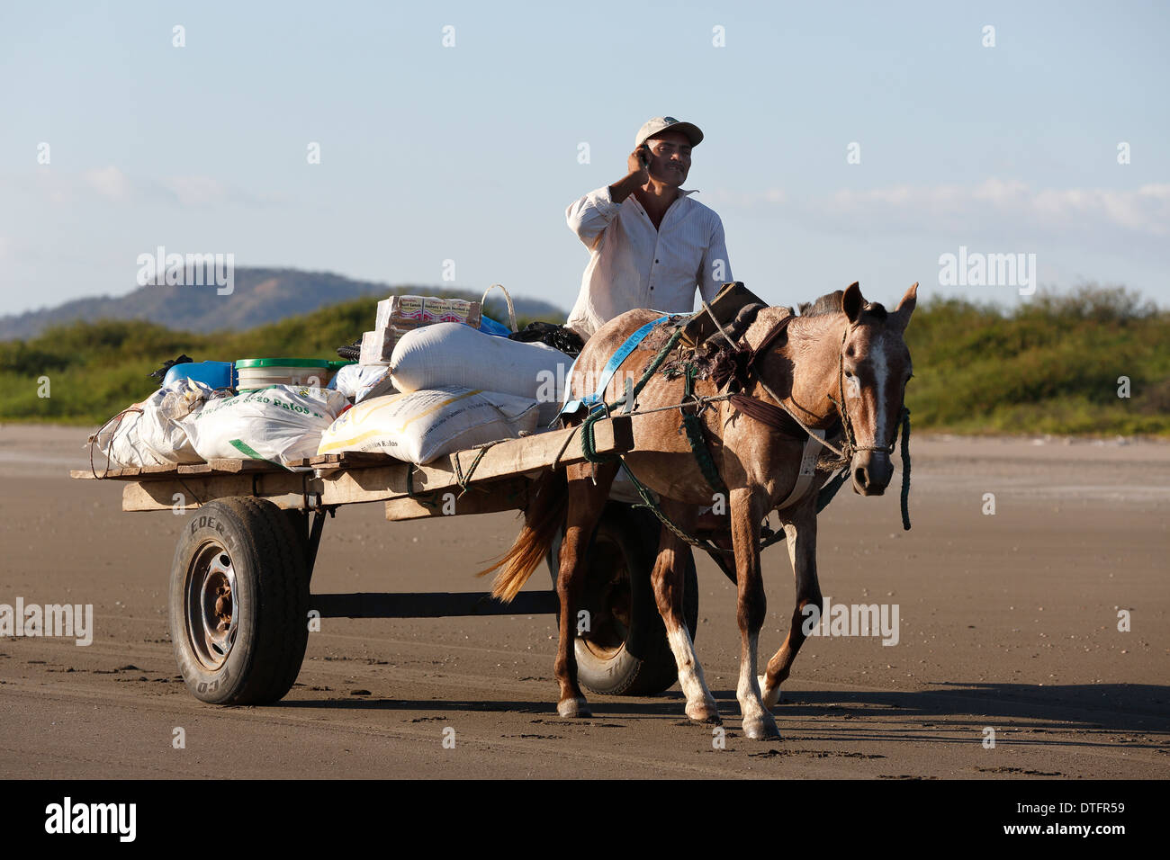 Man cellphone horse cart Mechapa Nicaragua - Stock Image