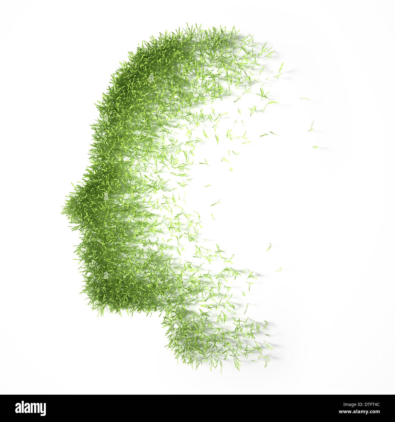 Grass patch shaped like a face Stock Photo