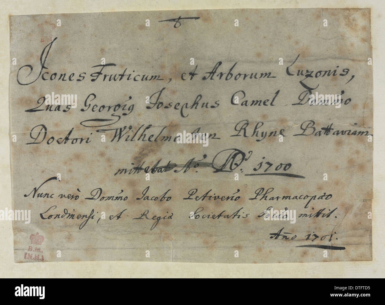 Note from Descriptiones Fruticum et Arborum Luzonis - Stock Image