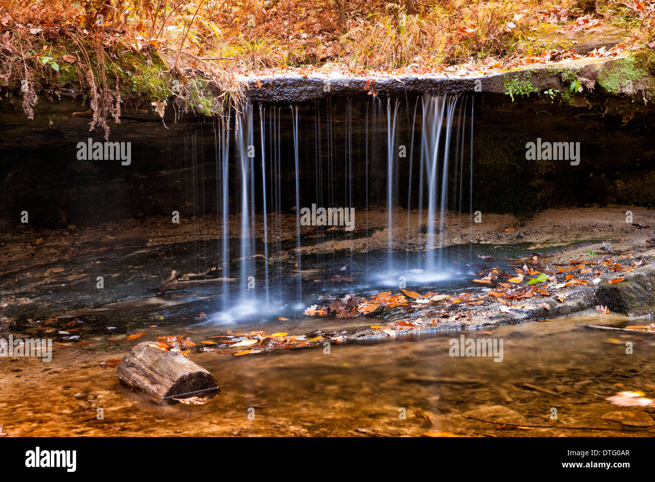 Pickle Springs Natural Area - Pickle Springs - Stock Image