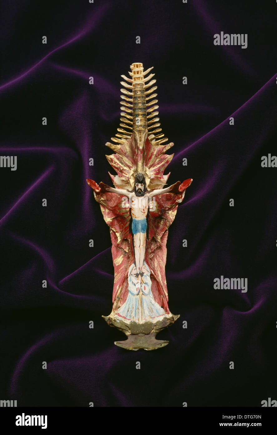 Painted skull of Arius sp., crucifix fish Stock Photo: 66739589 - Alamy