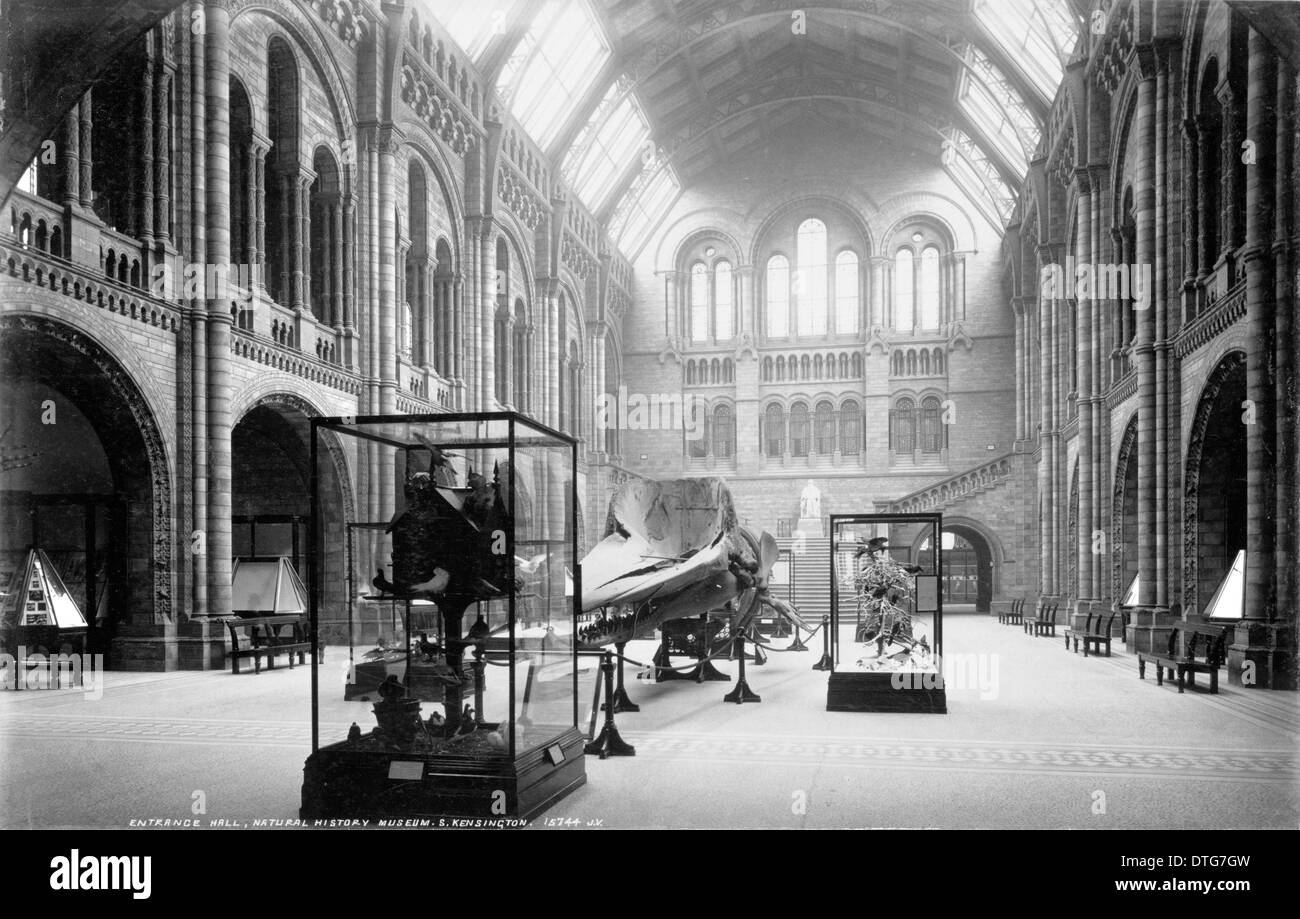 Central Hall, looking north. July 1902 Stock Photo
