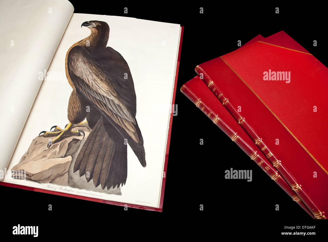 Bound copy of The Birds of America by John James Audubon. - Stock Image