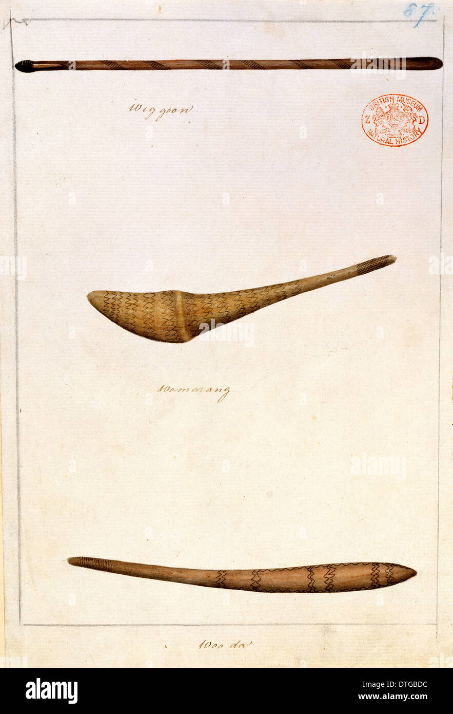 Aboriginal weapons and implements - Stock Image