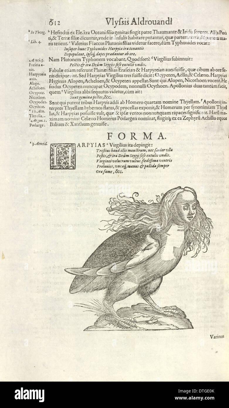 Harpy from Aldrovandi's Opera - Stock Image