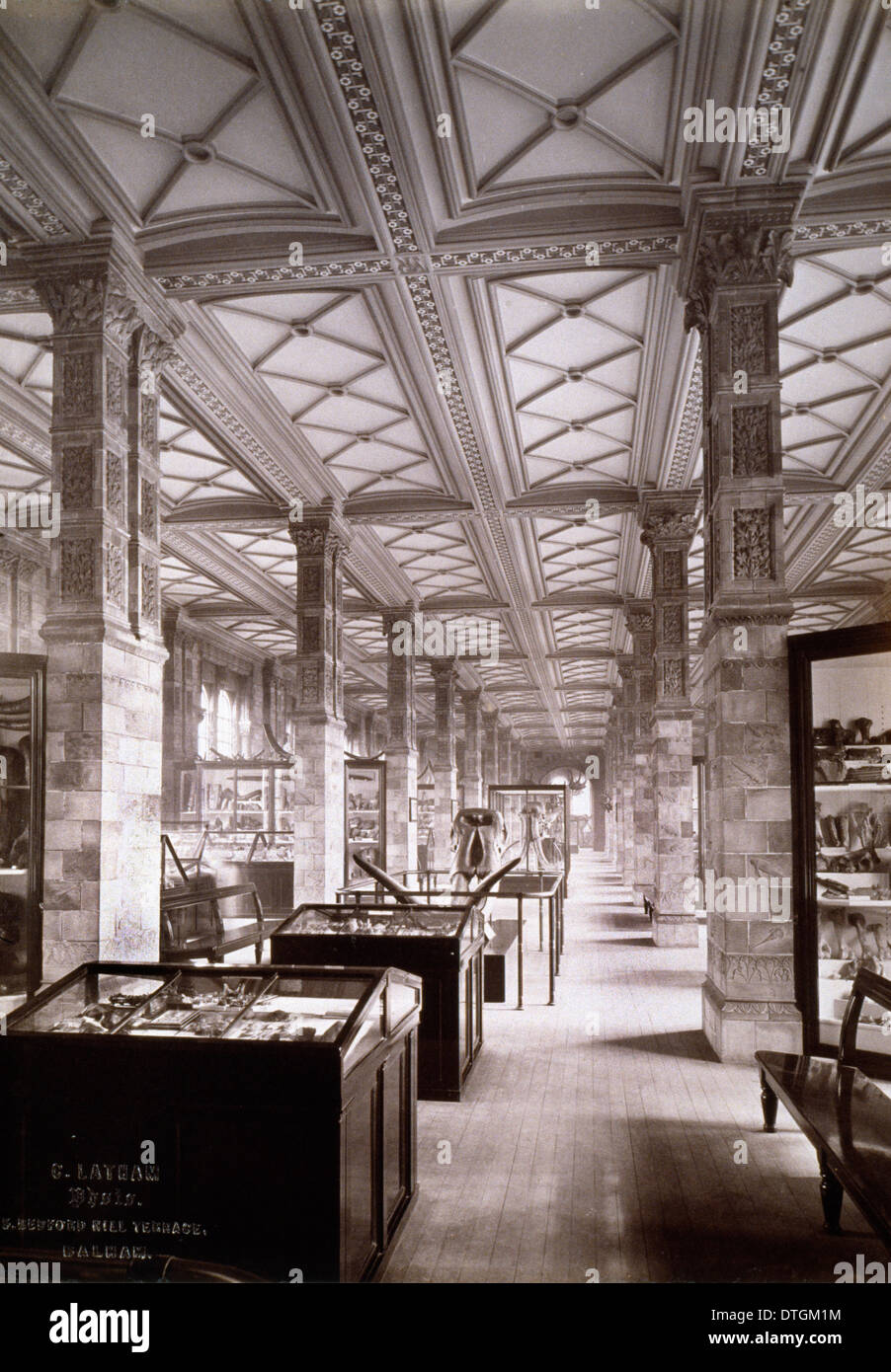 Geological Gallery, 1882 - Stock Image