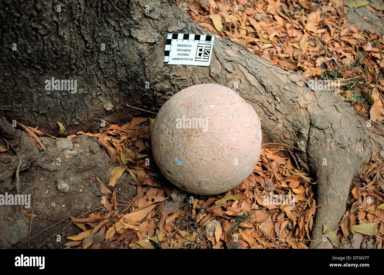 Dinosaur egg - Stock Image
