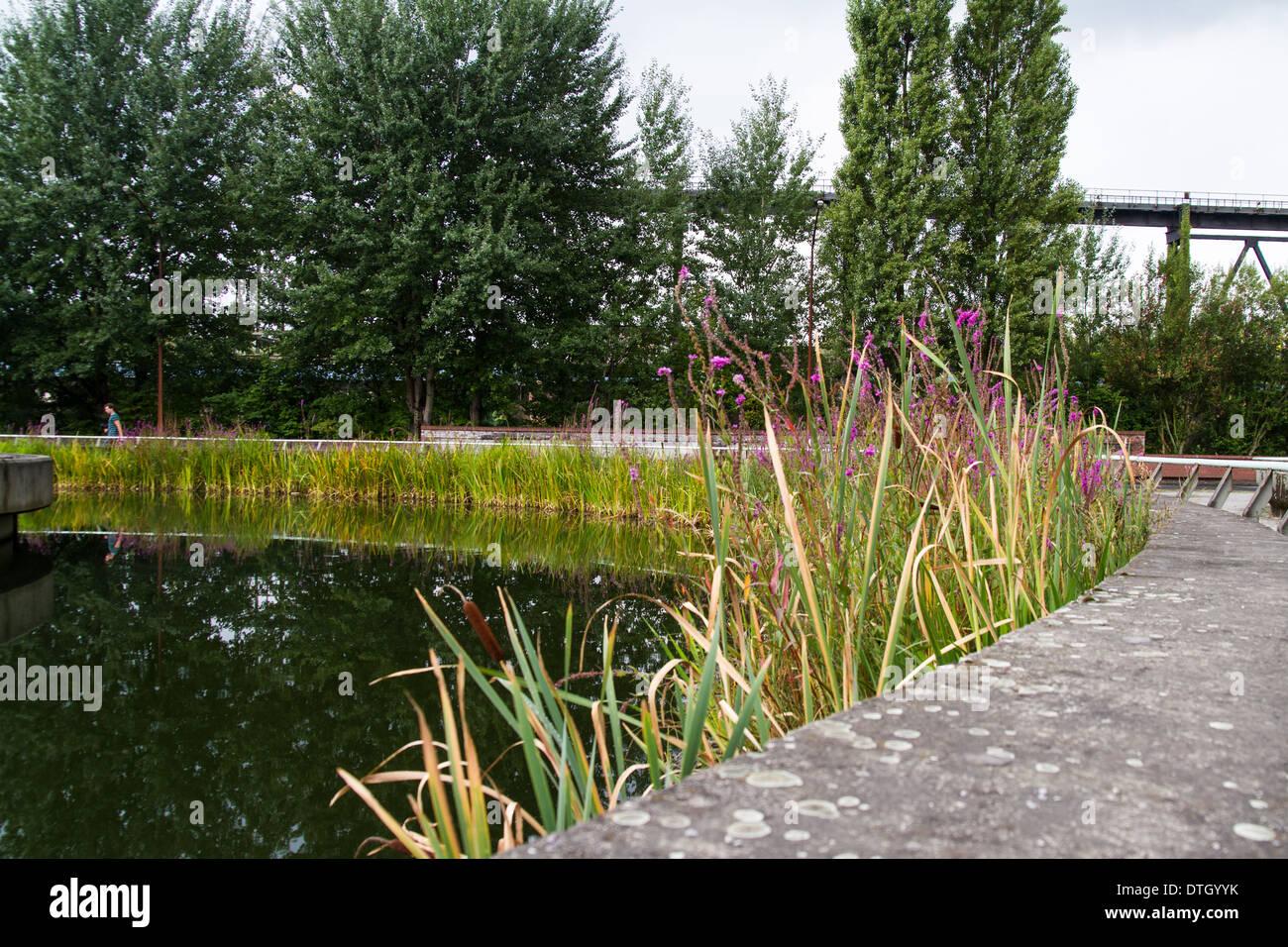Landschaftpark Duisburg Nord reclaimed coal and steel plant - Stock Image