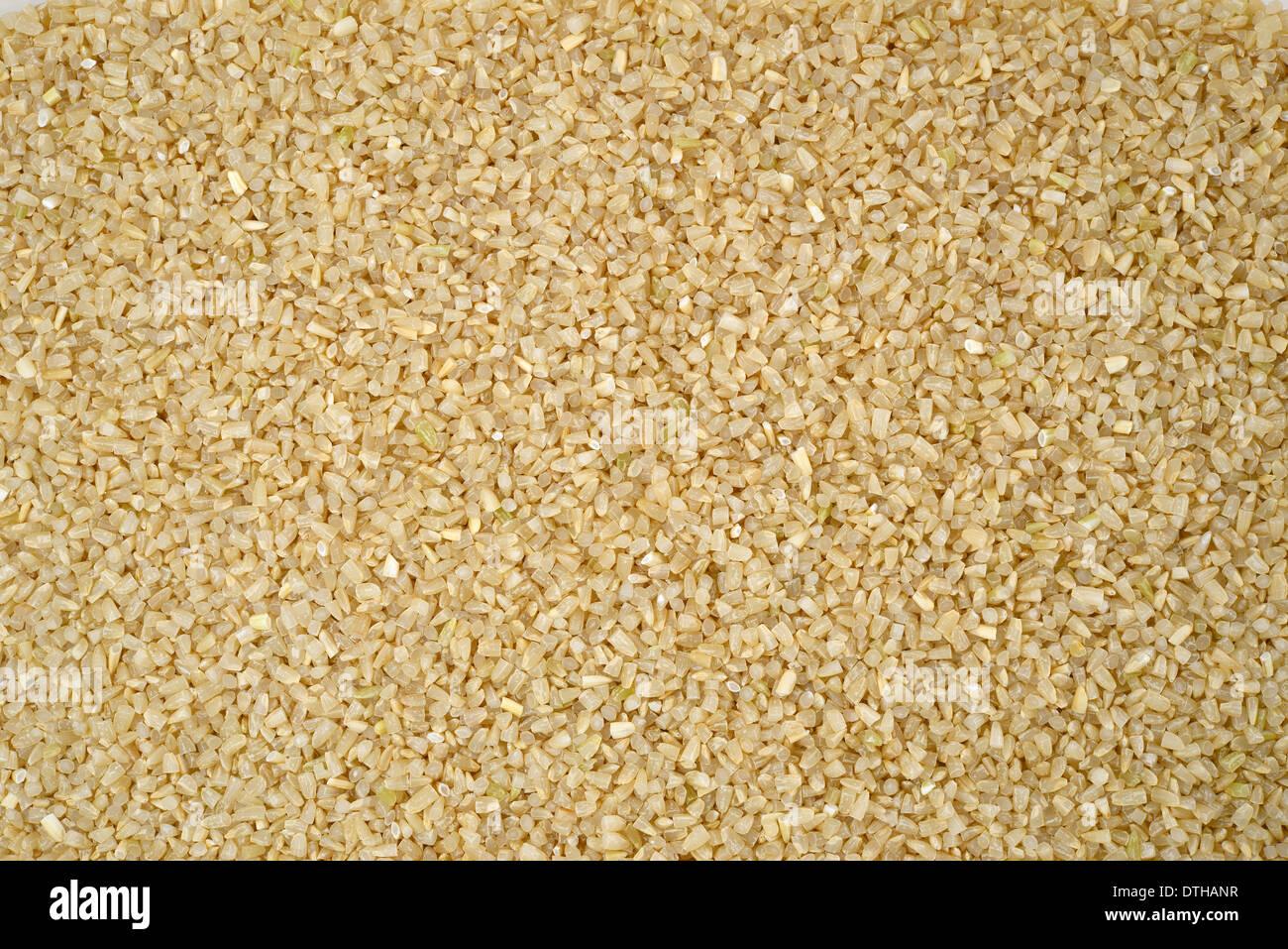 rice germ - Stock Image