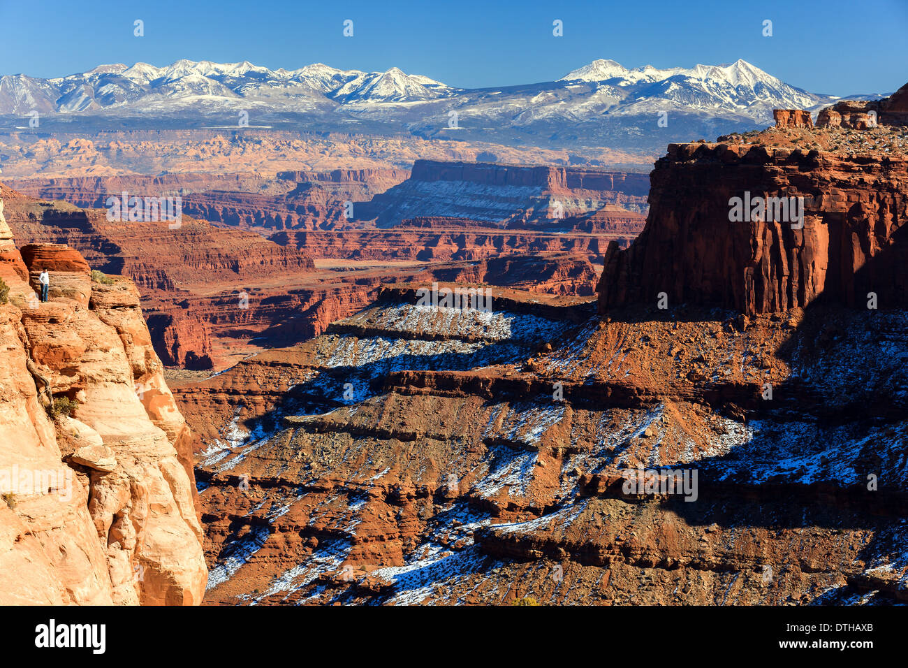Canyonlands National Park with the Lasal Mountains in the background, Utah - USA - Stock Image
