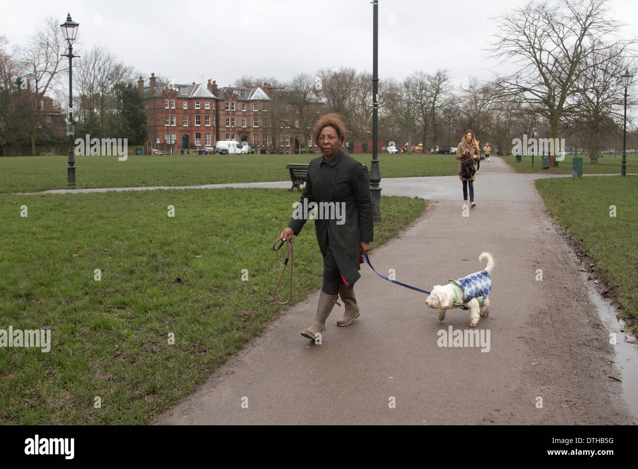London UK. 18th February 2014. Barrister and part time judge Constance Briscoe who stood trial at Southwark Crown Court for lying to police about the speeding points over  the MP Chris Huhne Speeding  points is seen walking her dogs in Clapham Common. Constance Briscoe is due appear in court in April after the jury failed to reach a verdict Credit:  amer ghazzal/Alamy Live News - Stock Image