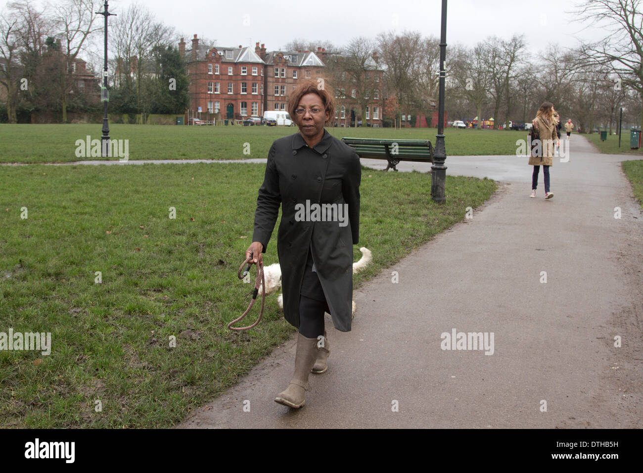 London UK. 18th February 2014. Barrister and part time judge Constance Briscoe who stood trial at Southwark Crown Court for lying to police about the speeding points concerning the MP Chris Huhne Speeding  points is seen walking her dogs in Clapham Common. Constance Briscoe is due appear in court in April after the jury failed to reach a verdict Credit:  amer ghazzal/Alamy Live News - Stock Image