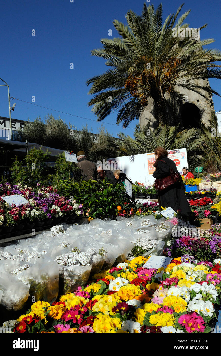 Mazzi Di Fiori Sanremo 2016.San Remo Flowers Italy Stock Photos San Remo Flowers Italy Stock