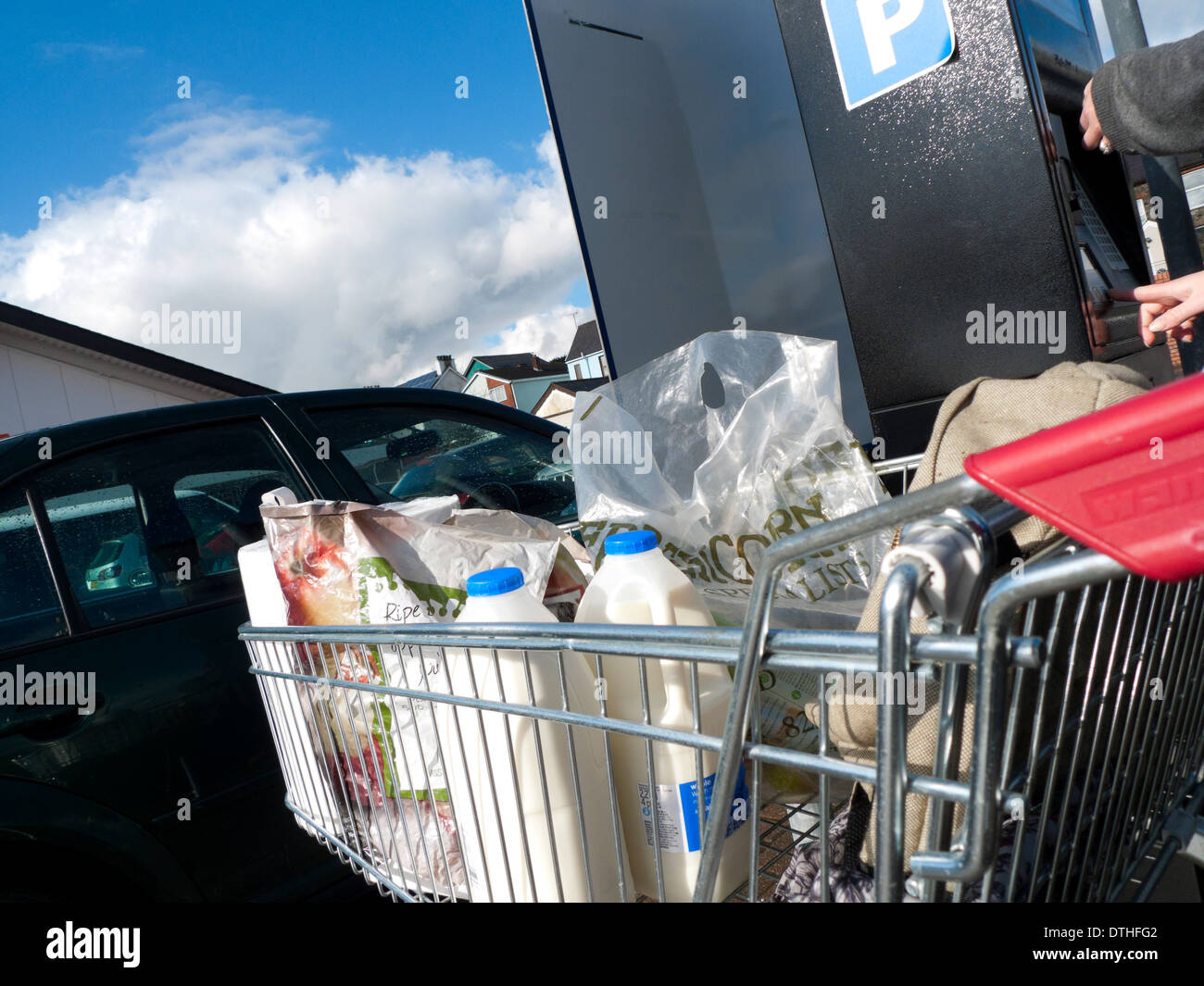 A full shopping cart with milk containers in the carpark at Sainsbury's supermarket Lampeter Ceredigion Wales UK KATHY DEWITT - Stock Image