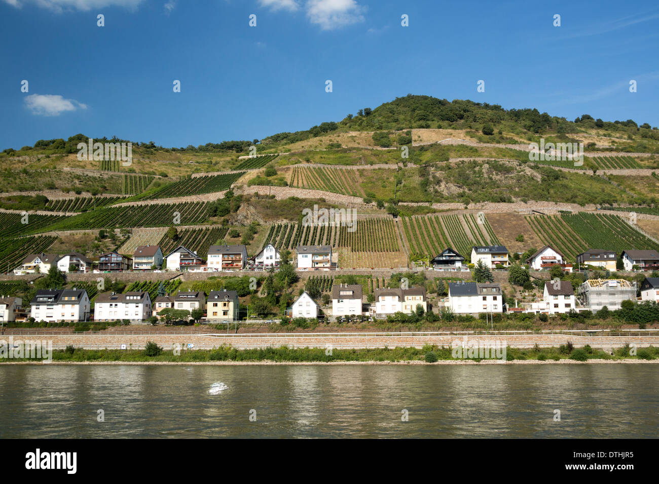 Rhine Valley village and vineyards, Germany wine-country - Stock Image