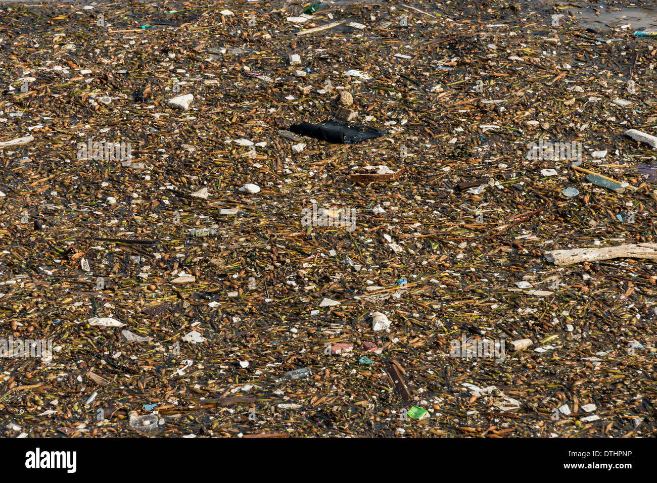 Garbage floating on the Huangpu River, Shanghai, China - Stock Image