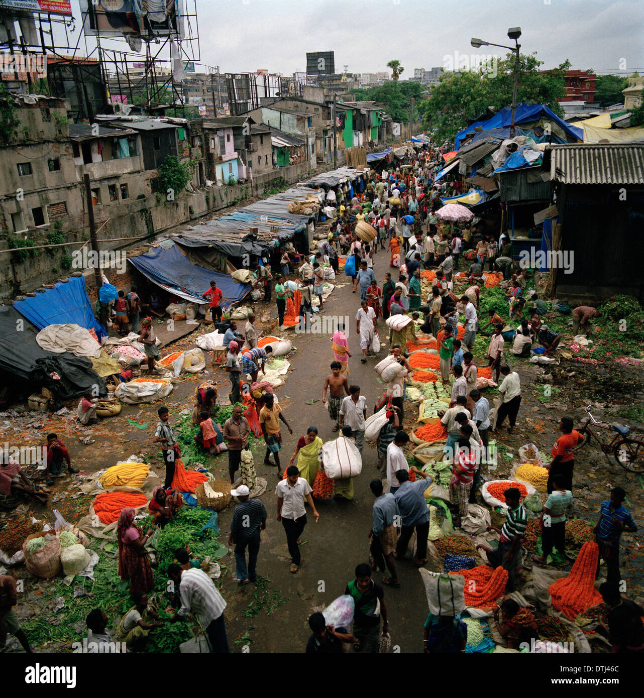 Mullick Ghat Flower Market in Kolkata Calcutta in West Bengal in India in South Asia. Malik Mallick Markets Trade Reportage Flowers Urban City Travel - Stock Image
