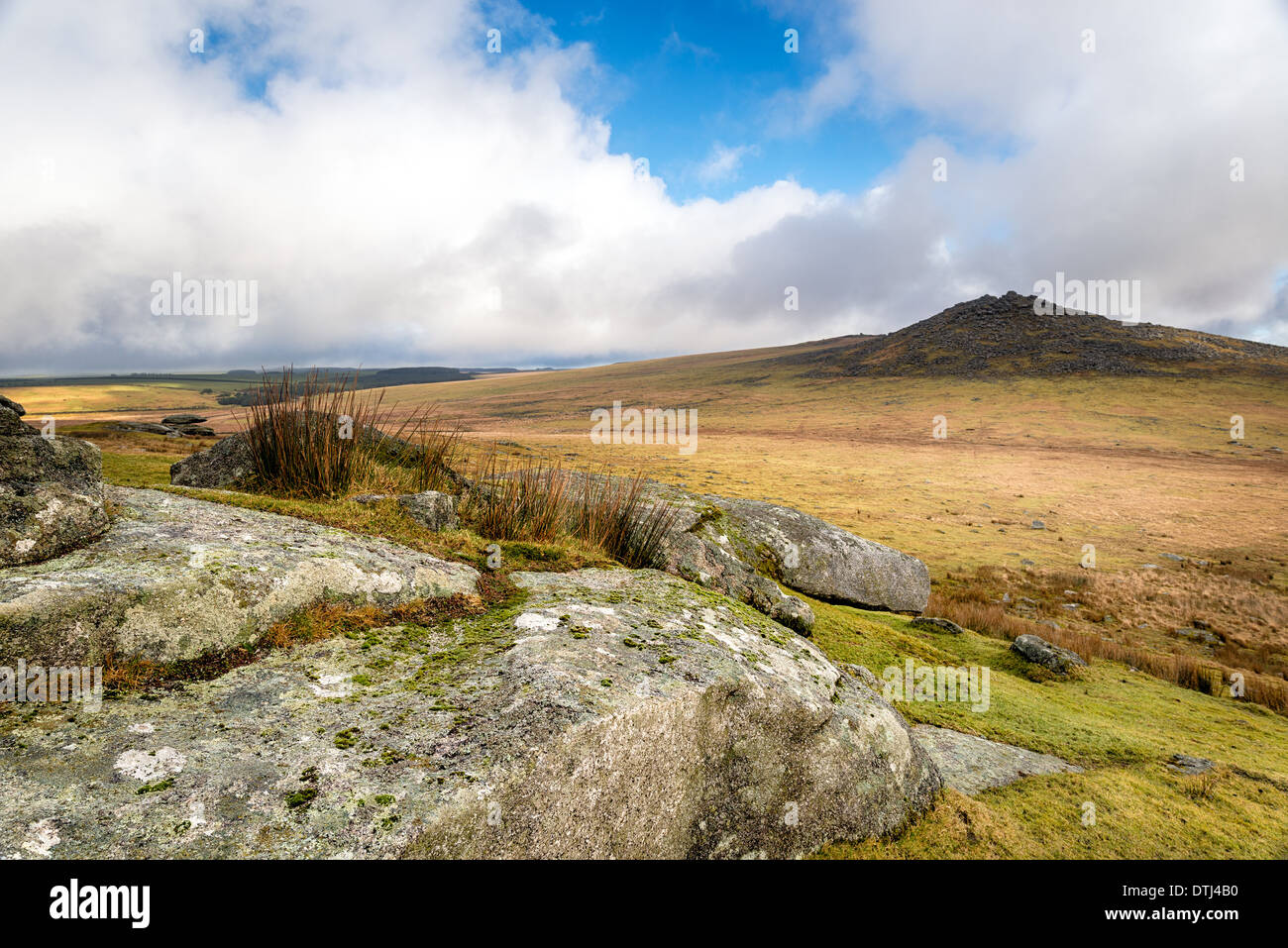 Looking out towards Rough Tor also known as Roughtor on Bodmin Moor in Cornwall - Stock Image