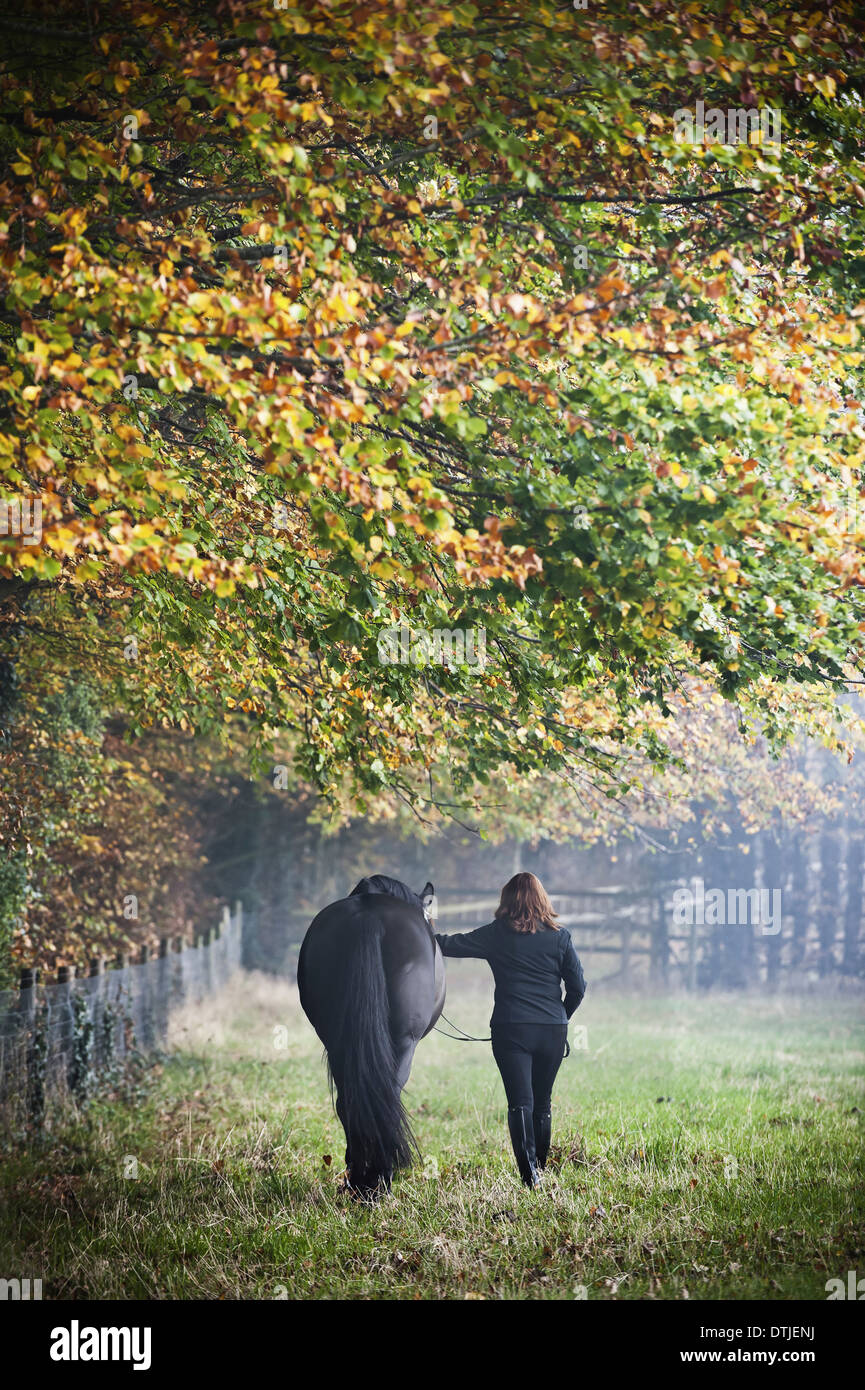 A woman walking with a horse in an autumn meadow England Stock Photo