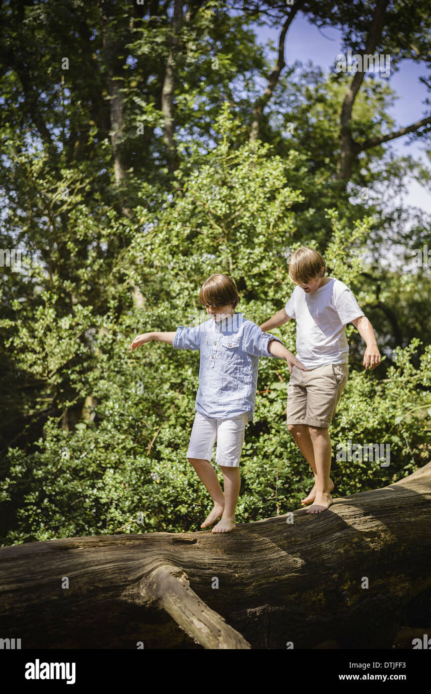 Two Boys Camping In The New Forest Walking Along A Log Above The Water Balancing With Their Arms Outstretched Hampshire England
