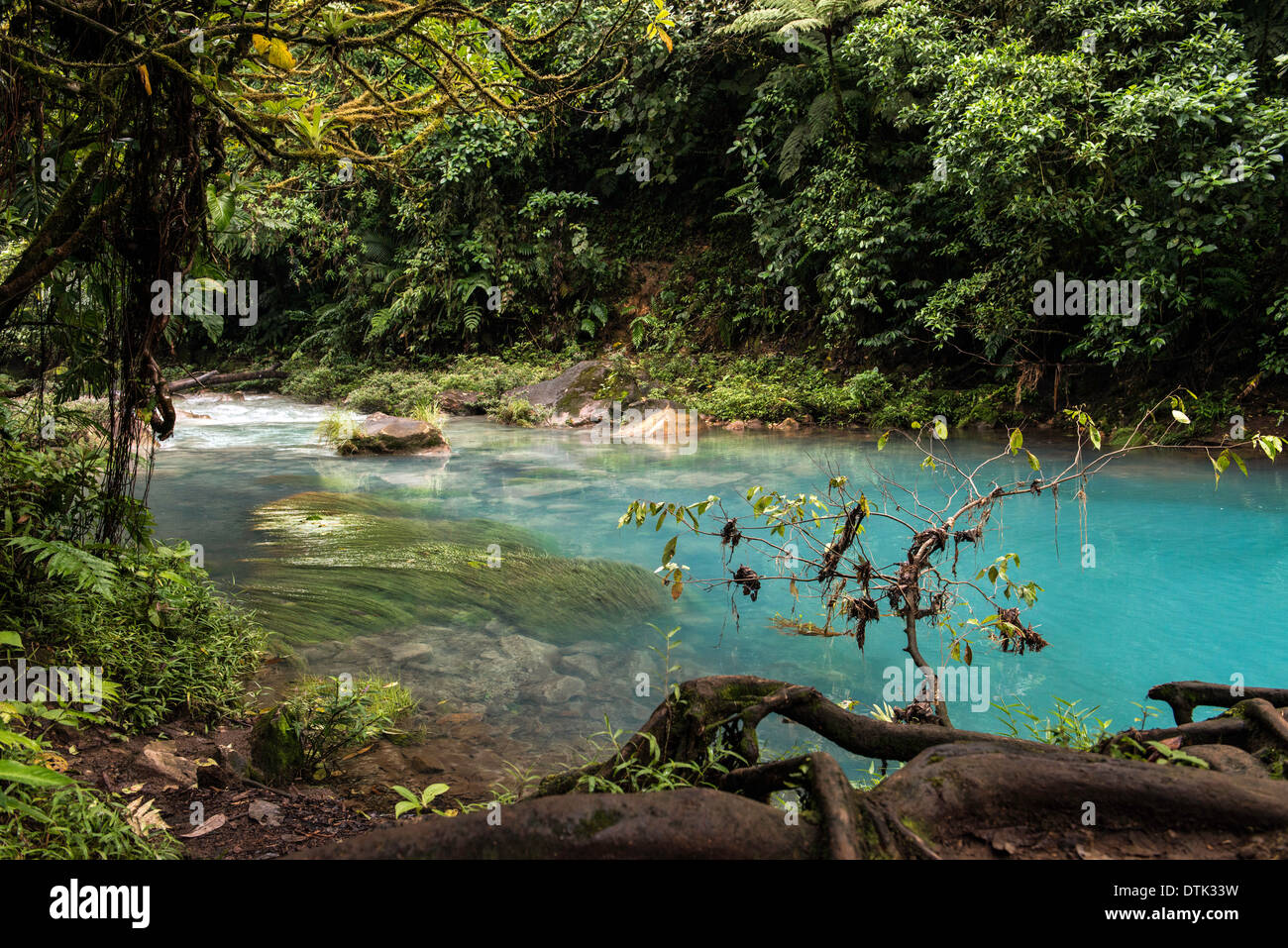 Celeste River or Rio Celeste in Tenorio Volcano National Park of Costa Rica Central America - Stock Image