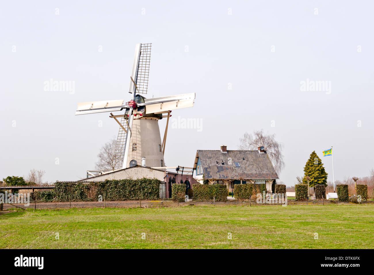 Historic white grain mill in picturesque rural scenery - Stock Image