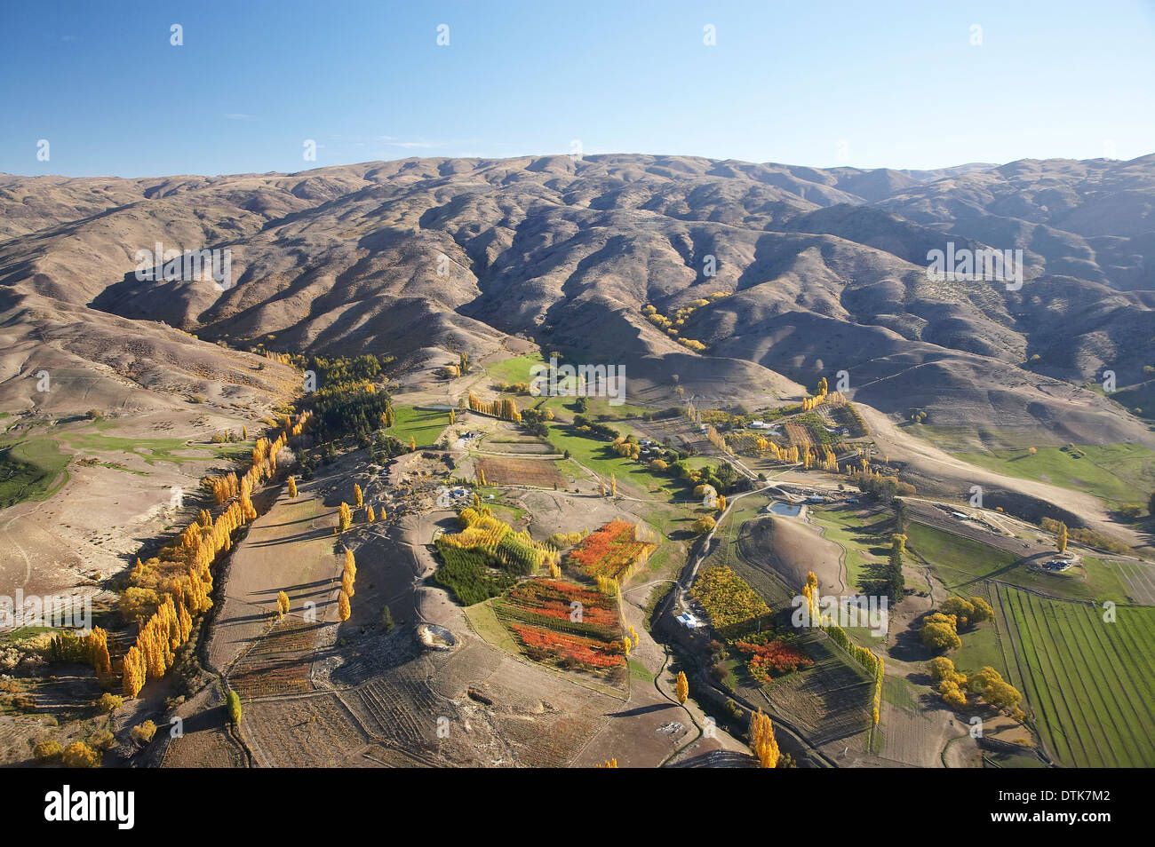 Orchards, Farms and Carrick Range, Bannockburn, Central Otago, South Island, New Zealand - aerial - Stock Image