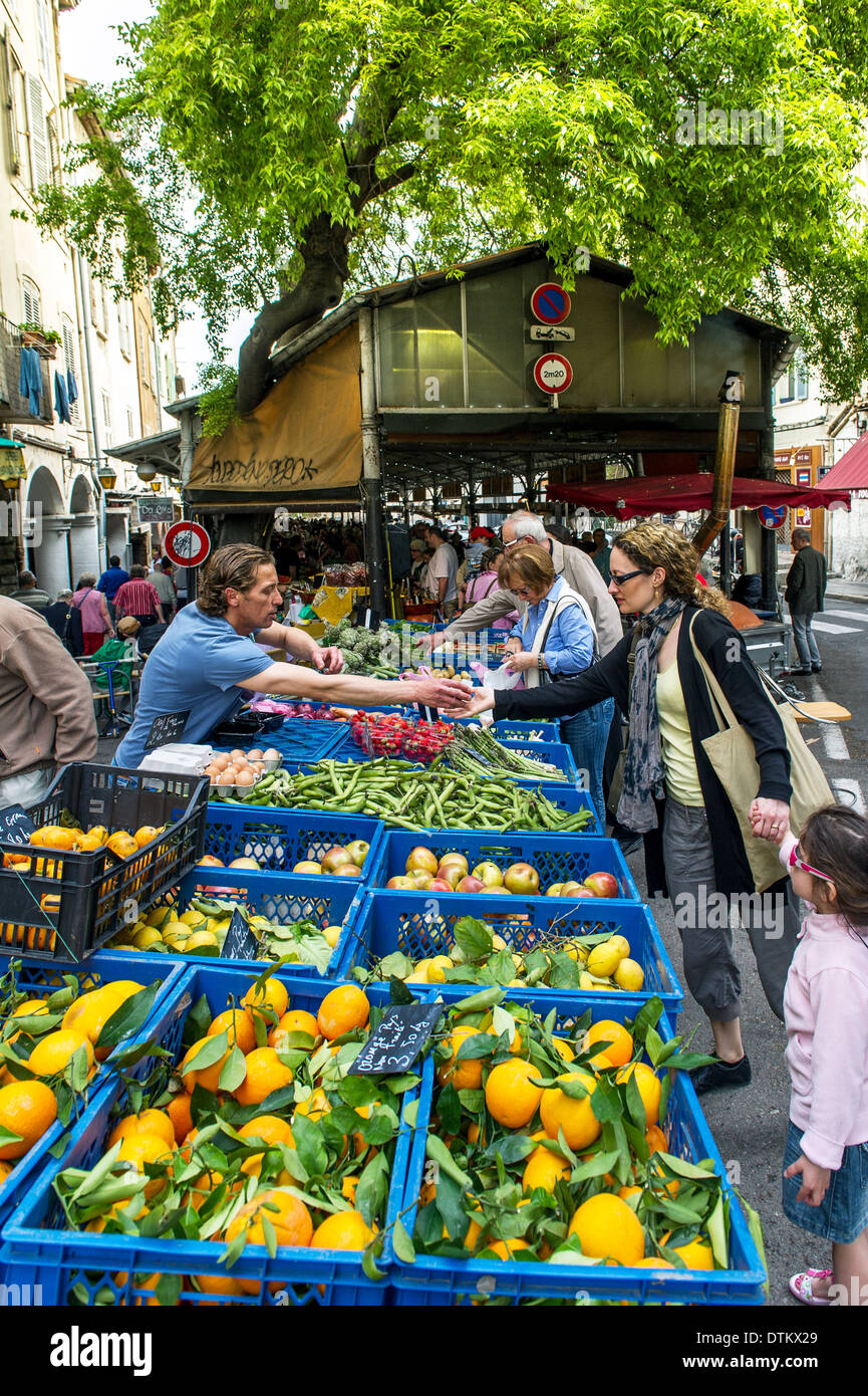 Europe, France, Alpes-Maritimes, Antibes. Provencal market. Fruits and vegetables. - Stock Image