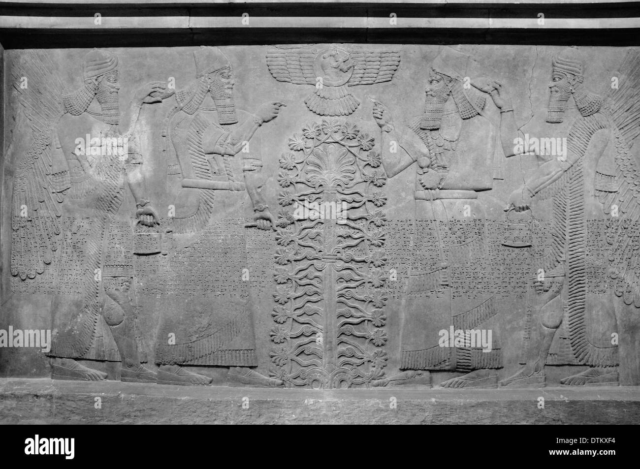 Assyrian Wall Art at the British Museum, London, England - Stock Image