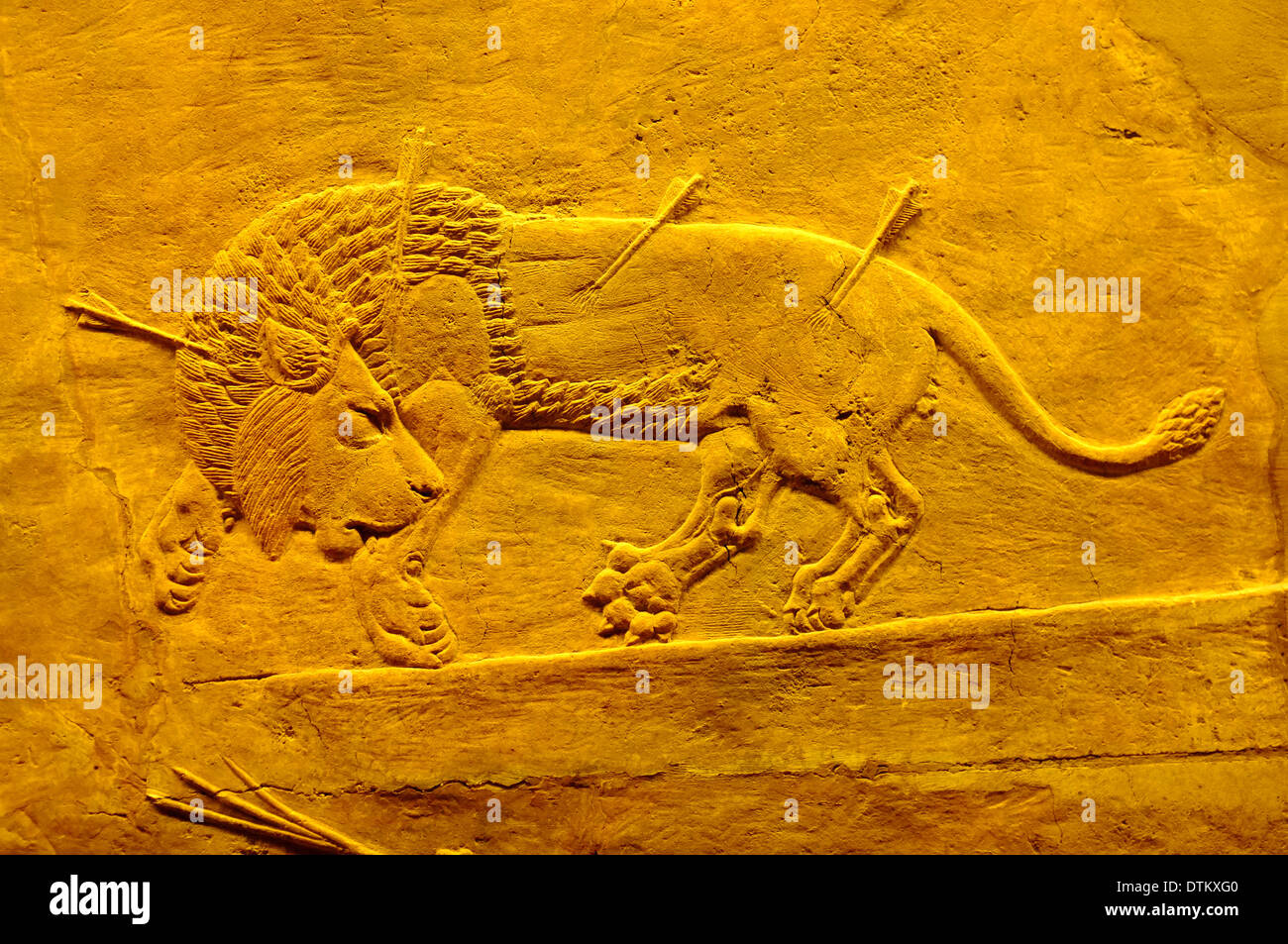 Assyrian Lion Hunt Relief Wall Art at the British Museum, London ...