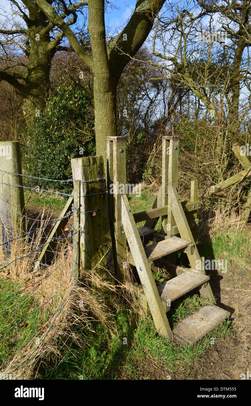 Ladder countryside stile gate in Sussex. - Stock Image