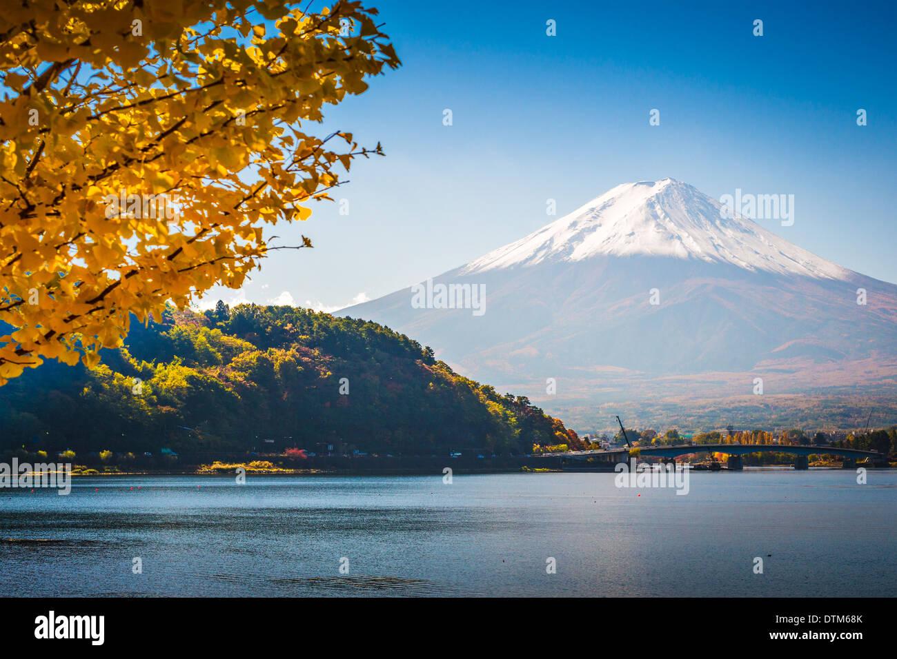 Fuji Mountain on Lake Kawaguchi in the fall season. - Stock Image
