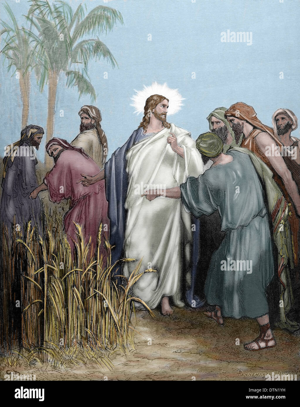 New Testament. Gospel of Matthew. Chapter XII. The apostles gathered ears in the day of rest. Colored engraving. - Stock Image