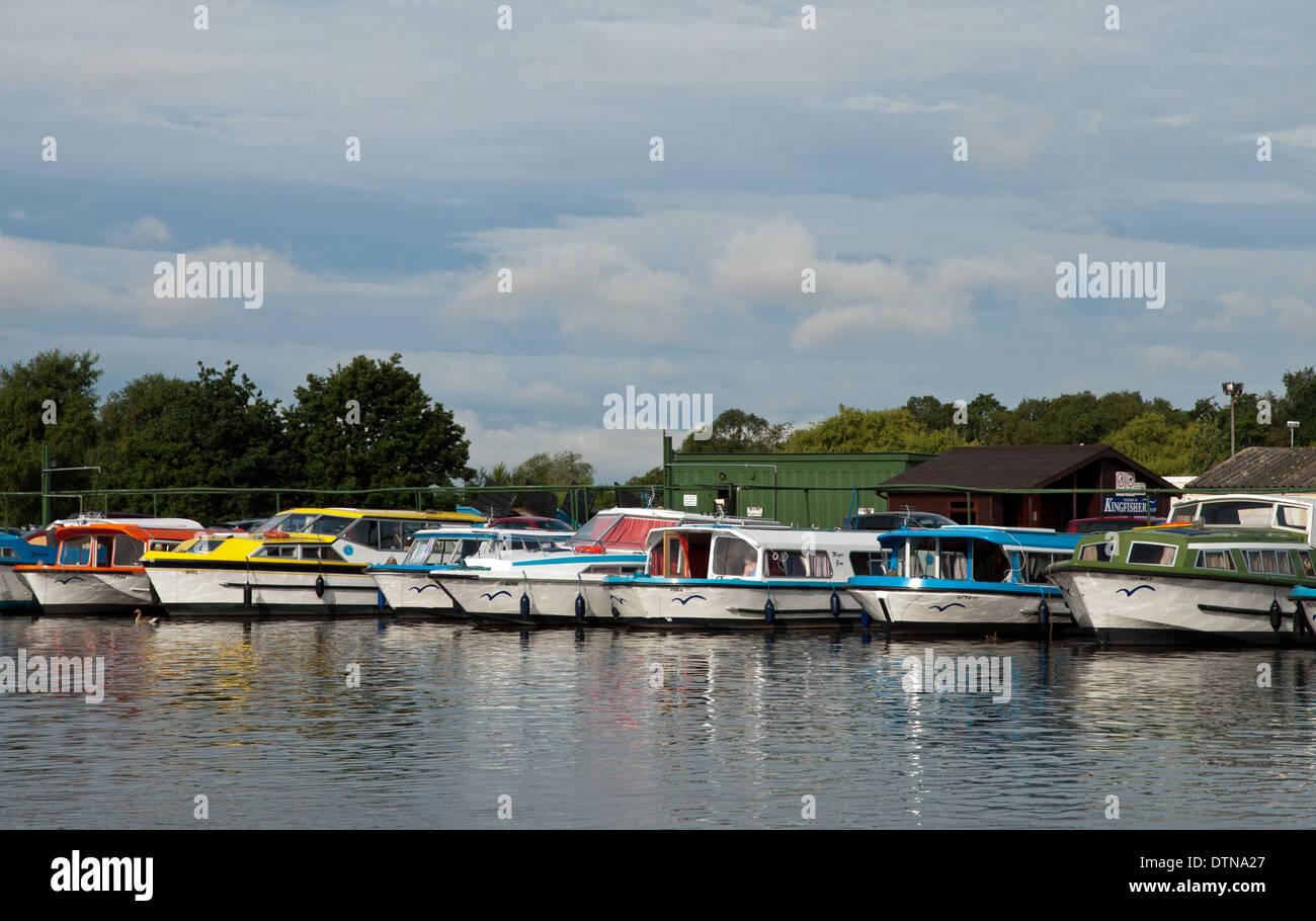 Norfolk Broads cruisers in marina - Stock Image