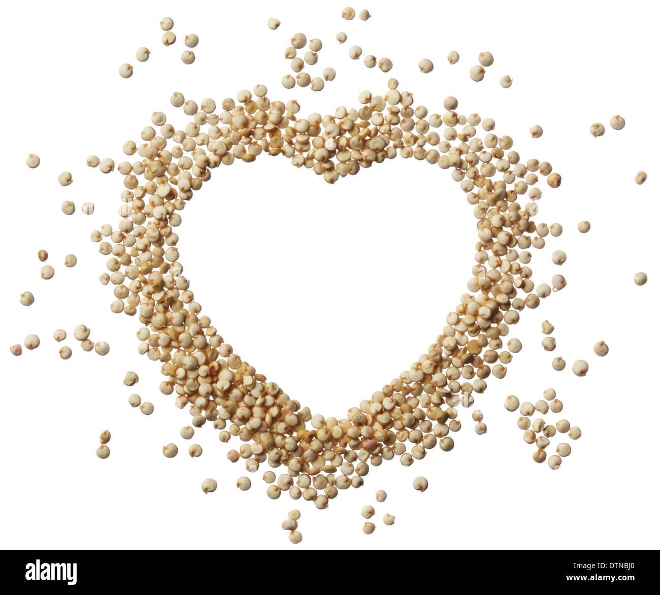 Heart of quinoa grain isolated on a white background - Stock Image