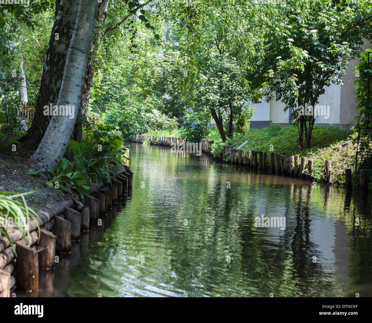 Trees, Calm waters and reflections of a pretty  in the Spreewald Biosphere reserve, Brandenburg, Germany Stock Photo