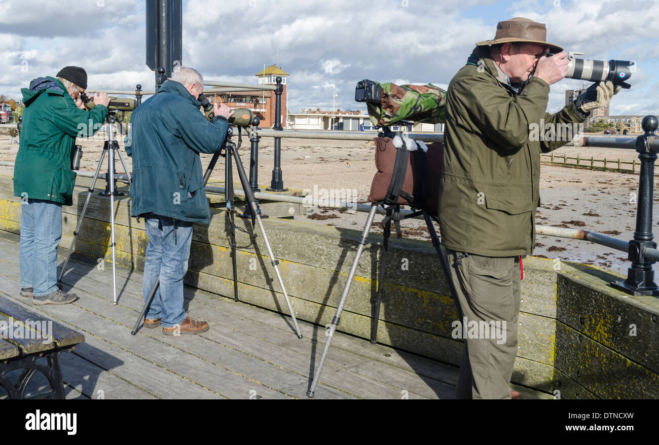 Birdwatchers looking out for birds with tripods and long telephoto lenses. Twitchers in West Sussex, England, UK. - Stock Image