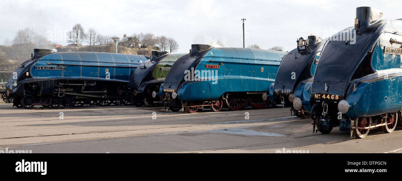Five Class A4 Steam Locomotives at the Mallard 75 Gathering, Shildon National Railway Museum - Stock Image