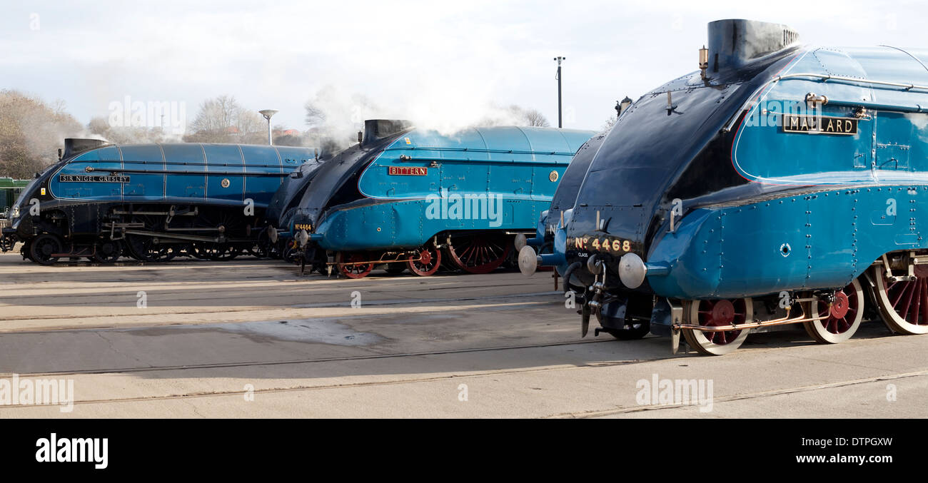 Class A4 Steam Locomotives at the Mallard 75 Gathering, Shildon National Railway Museum - Stock Image
