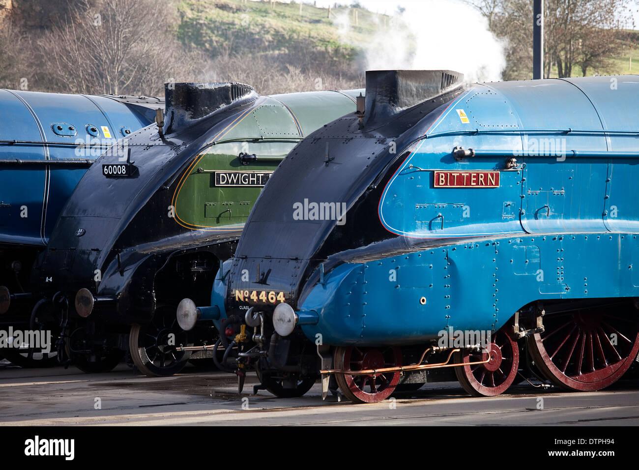 Class A4 Steam Locomotives 'Bittern' and 'Dwight D Eisenhower' at the Mallard 75 Gathering, Shildon National Railway Museum - Stock Image