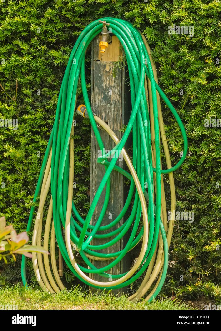 Garden Hose Coiled Around An Outdoor Tap - Stock Image