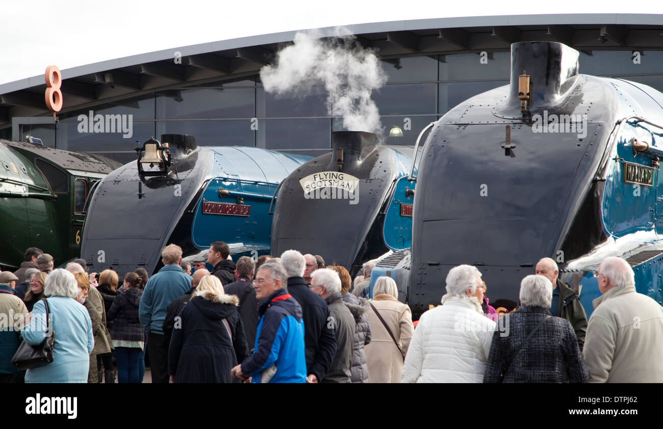 Steam enthusiasts gathered at the National Railway Museum in Shildon, England. - Stock Image