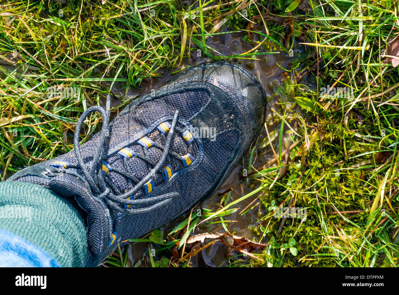 Boot on waterlogged ground with ground water collecting on grass. Stock Photo