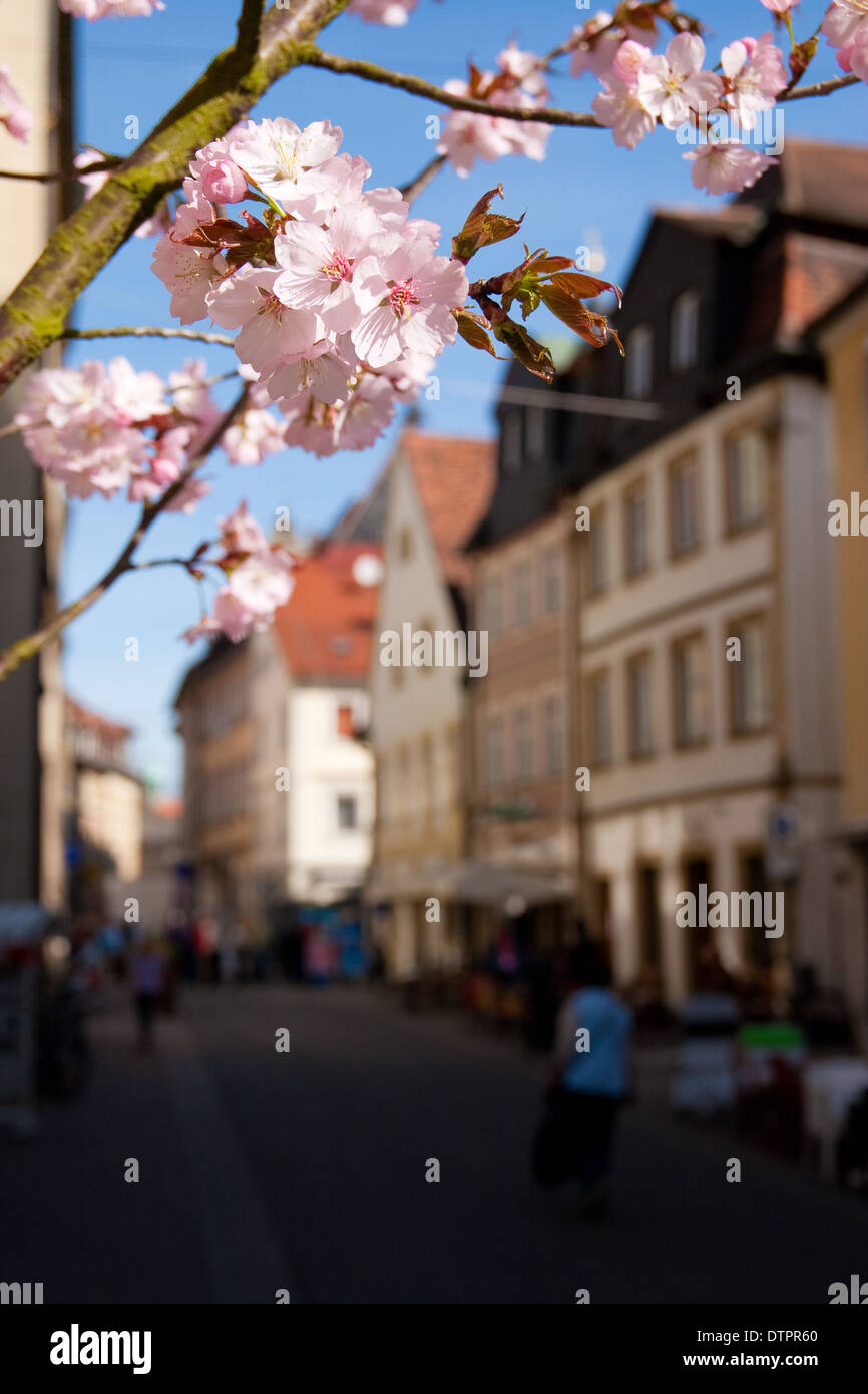 Pedestrian zone, Bamberg in spring Stock Photo