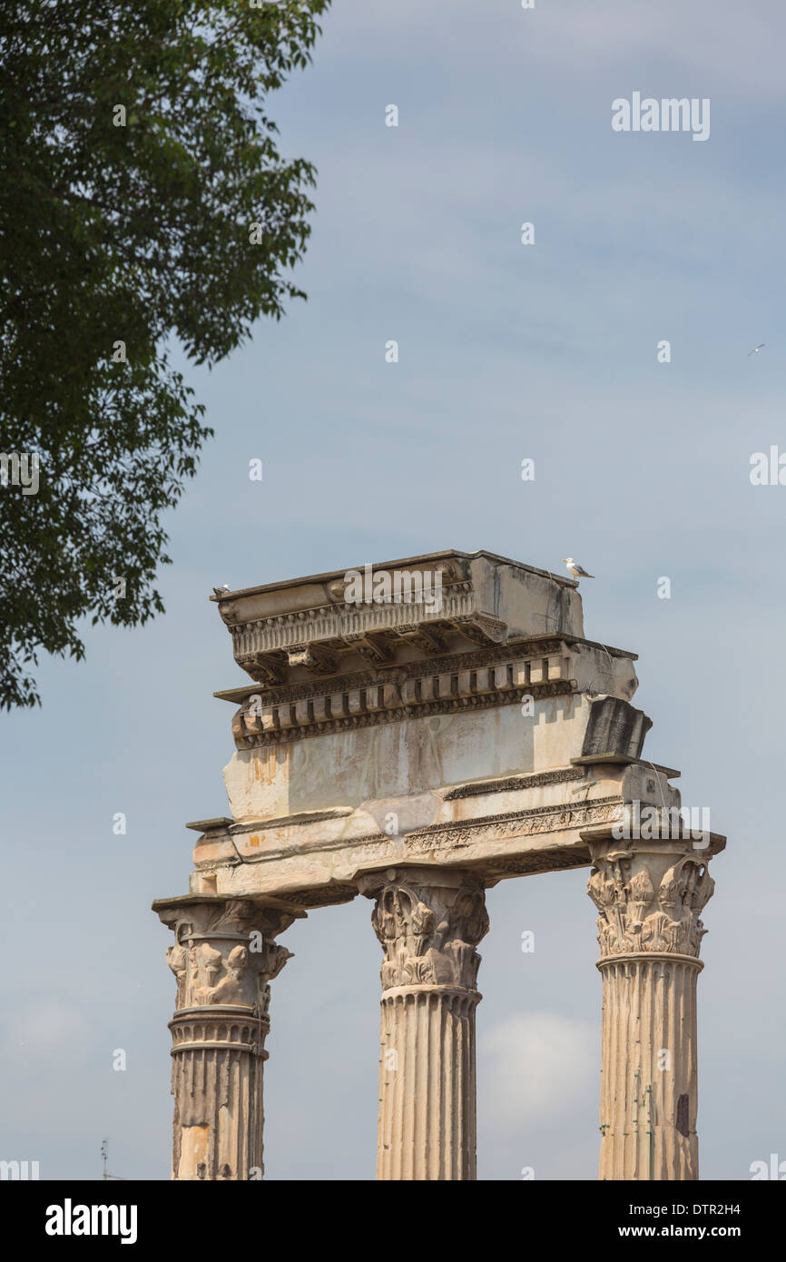 detail of columns and entablature of the Temple of Castor and Pollux, Roman forum, Rome, Italy - Stock Image