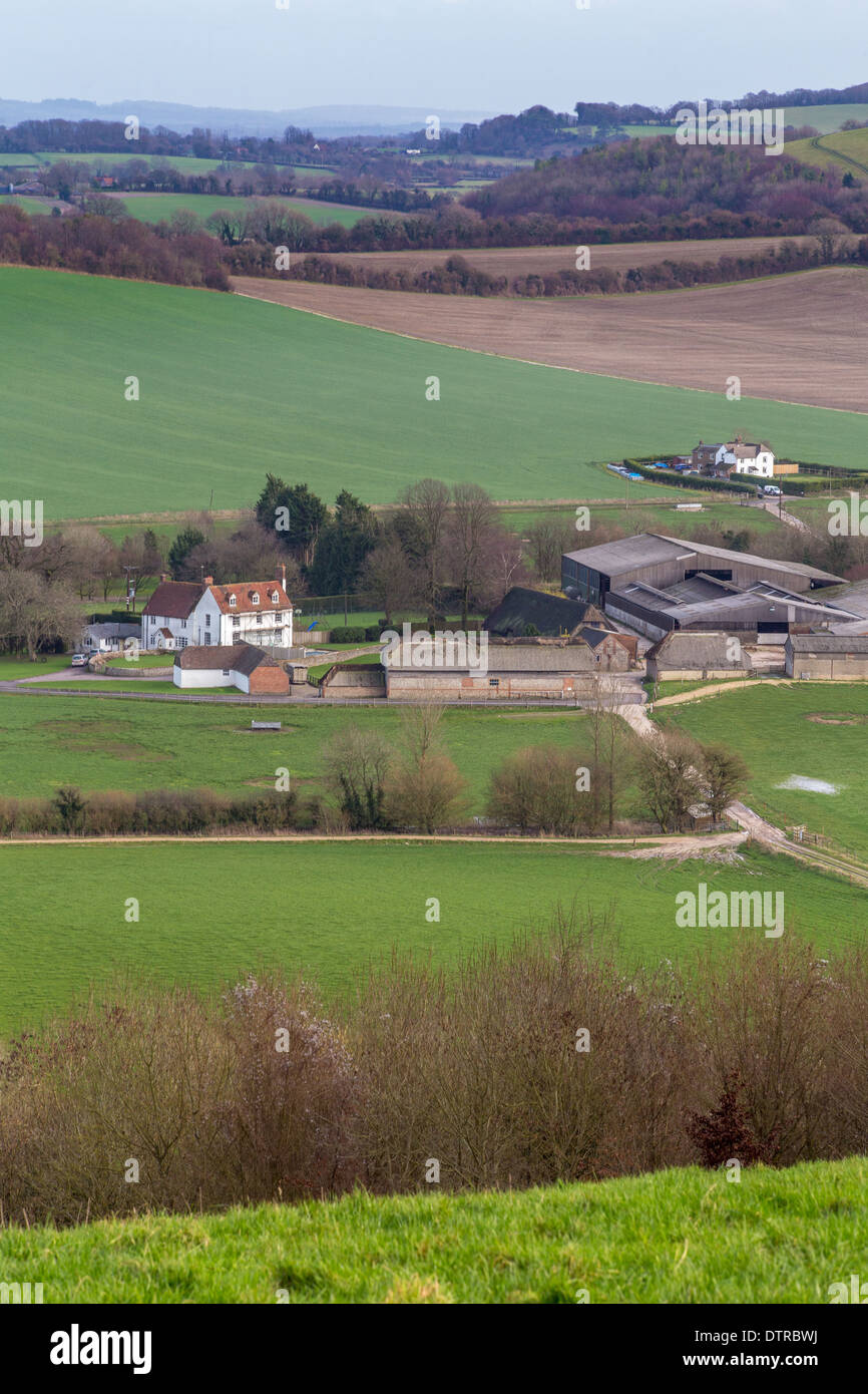 Farm in the South Downs National Park, Meon Valley, Hampshire - Stock Image