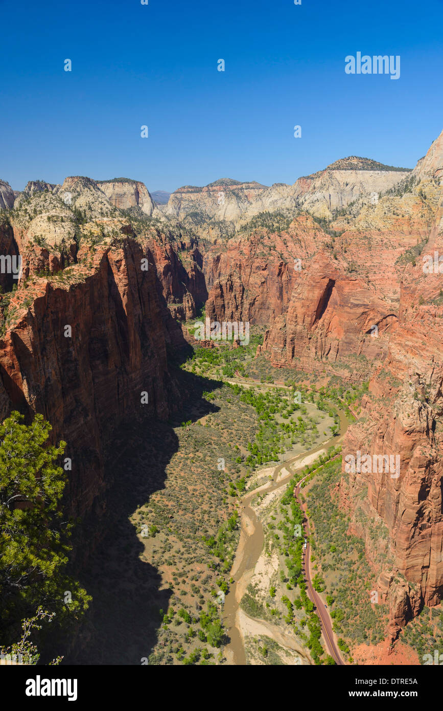 view of zion canyon from angels landing zion national park utah