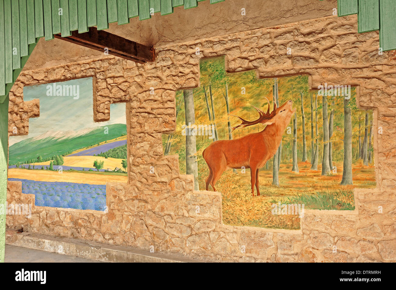 Wallpainting, house of environment and hunting, Sault, Vaucluse, Provence-Alpes-Cote d'Azur, Southern France - Stock Image